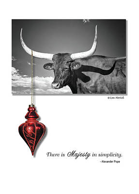 Poster featuring the photograph Majesty In Simplicity by Lou Novick