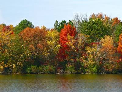 Michigan Fall Colors Poster by Scott Hovind