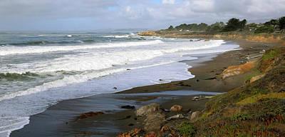 Moonstone Beach Cambria California Poster by Barbara Snyder