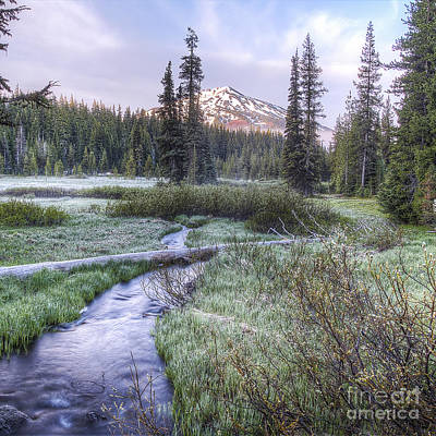 Mount Bachelor From Soda Creek At Sunrise Poster by Twenty Two North Photography