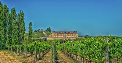 Napa Valley Vineyard And Winery Poster