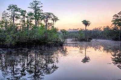 Natural Florida Poster