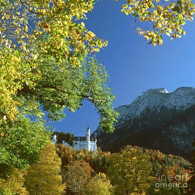 Neuschwanstein Castle Bavaria In Autumn 5 Poster by Rudi Prott