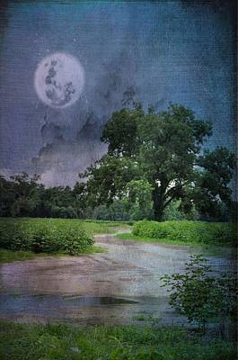 Night Walk Poster by Jan Amiss Photography
