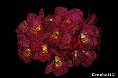 Orchid Floral Arrangement Poster by Gary Crockett