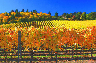 Oregon Wine Country Poster