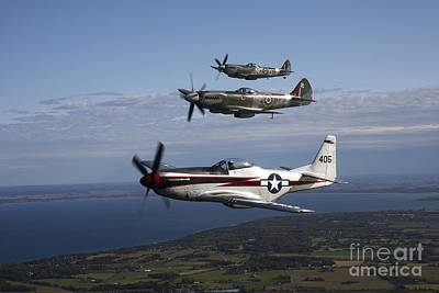 P-51 Cavalier Mustang With Supermarine Poster by Daniel Karlsson