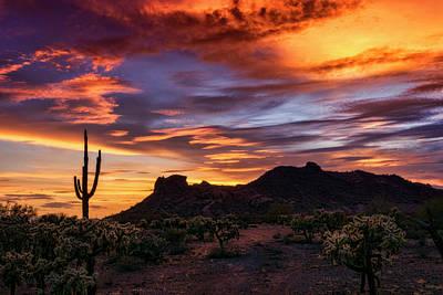 Paint The Sonoran Skies  Poster by Saija Lehtonen