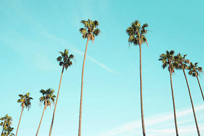 Palm Trees Poster by Happy Home Artistry