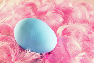 Pastel Easter Egg Lying On Feathers Poster by Michal Bednarek