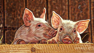 Pig Collection Poster by Marvin Blaine