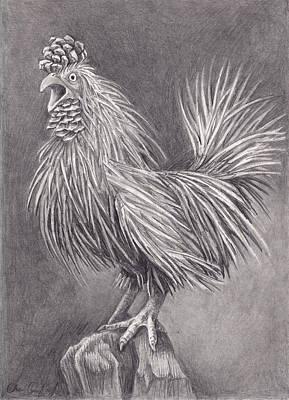 Pine Chicken Poster by Cheri Crawford