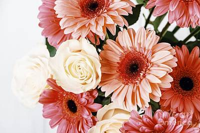Pink Gerbera Daisy Flowers And White Roses Bouquet Poster