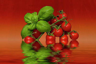 Poster featuring the photograph Plum Cherry Tomatoes Basil by David French