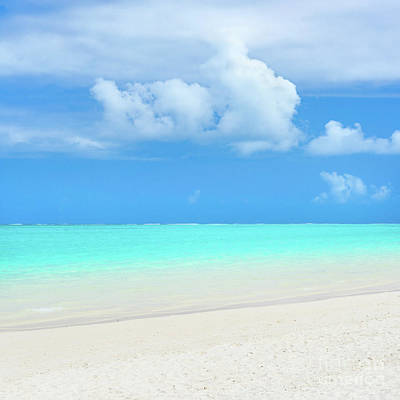 Pointe D'esny Beach, Mauritius.  Poster