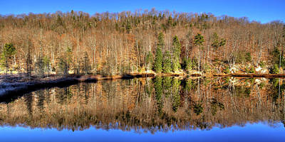 Poster featuring the photograph Pond Reflections by David Patterson