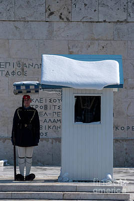 Presidential Guard With Snow Poster