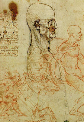 Profile Of A Man And Study Of Two Riders Poster by Leonardo da Vinci