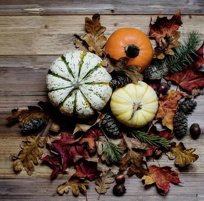 Pumpkins Poster by Rebecca Cozart
