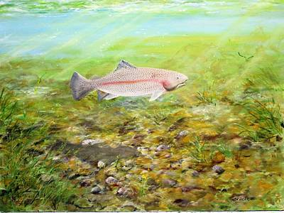 Rainbow Trout Poster by Ken Ahlering