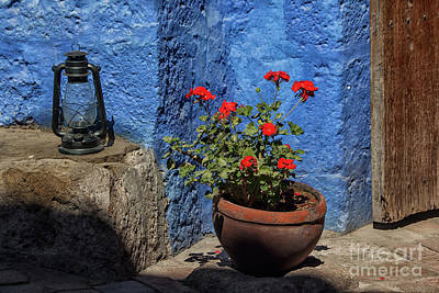 Poster featuring the photograph Red Geranium Near A Blue Wall by Patricia Hofmeester