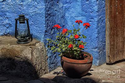 Red Geranium Near A Blue Wall Poster