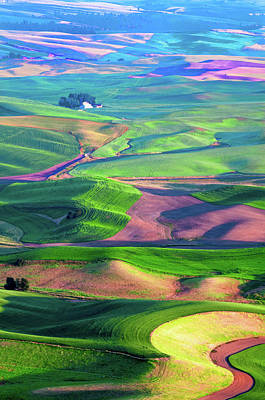 Green Hills Of The Palouse Poster by James Hammond