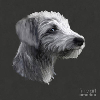 Rough Coated Lurcher  Poster
