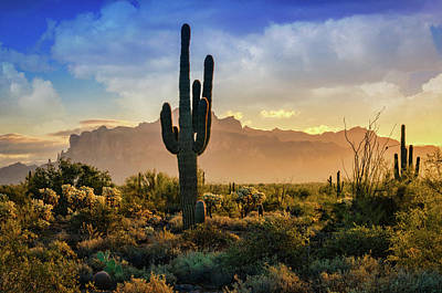 Poster featuring the photograph Saguaro Sunrise In The Superstitions  by Saija Lehtonen