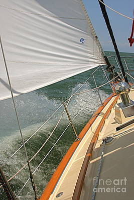 Poster featuring the photograph Sailboat by Nicola Fiscarelli