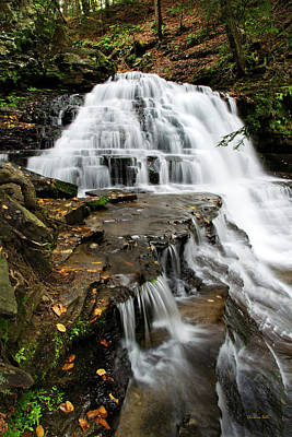 Poster featuring the photograph Salt Springs Waterfall by Christina Rollo