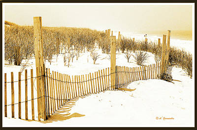 Sand Dune Fence, New Jersey Coast Poster
