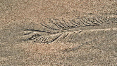Sand Patterns On The Beach 2 Poster