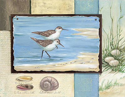 Sandpiper Collage I Poster by Paul Brent