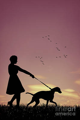 Silhouette Of Woman Walking Her Dog Poster