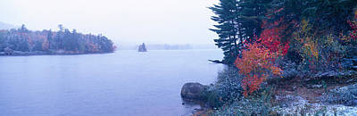 Snow And Autumn Trees, Adirondack Poster
