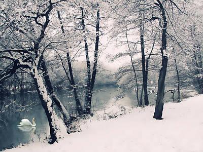 Snow Pond Poster