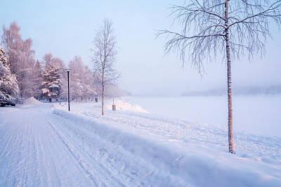 Snowy Walk. Poster