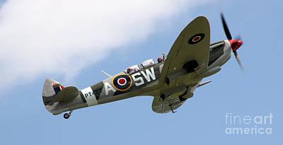 Spitfire Poster by Angel  Tarantella