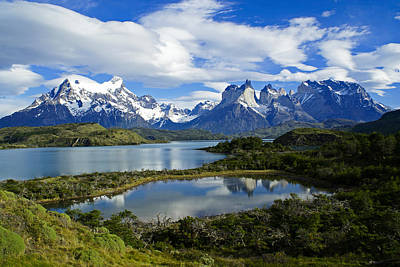 Springtime In Patagonia Poster