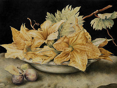 Still Life With Pumpkin Flowers And Vine Leaves Poster