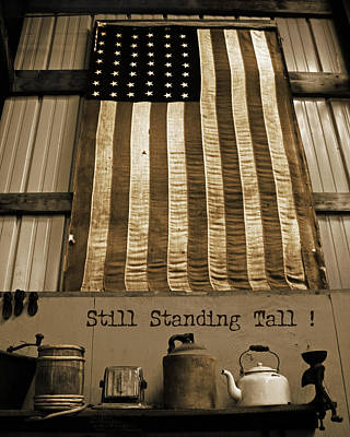 Still Standing Tall Poster by Joanne Coyle