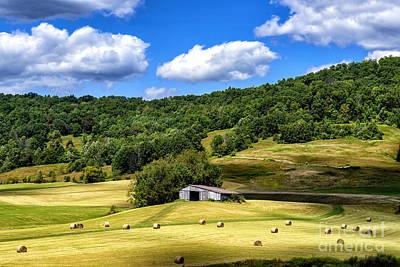 Summer Morning Hay Field Poster by Thomas R Fletcher