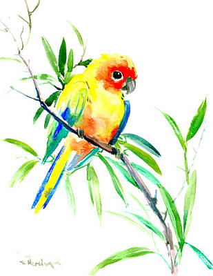 Sun Parakeet Poster by Suren Nersisyan