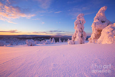 Sunset Over Frozen Trees On A Mountain, Levi, Finnish Lapland Poster by Sara Winter