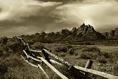 Tetons And Fence Poster by Timothy Johnson