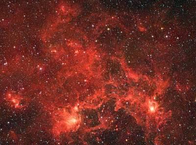 The Dragon Fish Nebula Poster