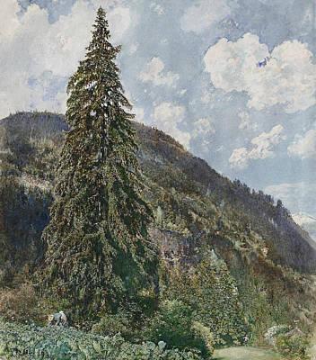 The Old Spruce In Bad Gastein Poster by Rudolf von Alt