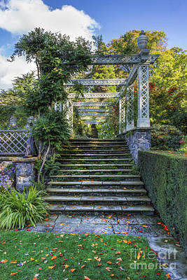 The Secret Garden Poster by Ian Mitchell