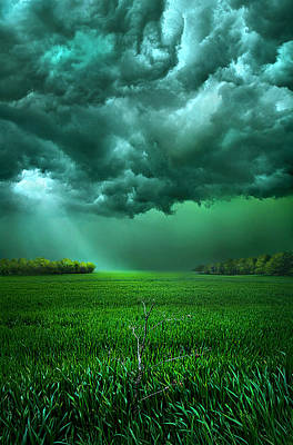 There Came A Wind Poster by Phil Koch